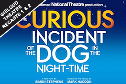 Curious Incident of the Dog in the Night Time